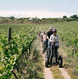 Vineyard Segway Tour