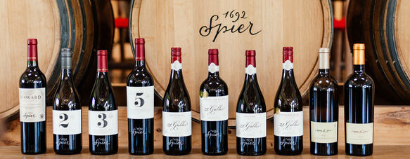 Toasting 10 of the best from Spier