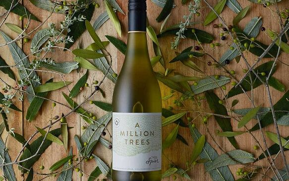 Growing a green revolution: new Spier Million Trees wine range celebrates community growers